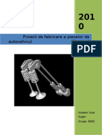 Proiect FRIA