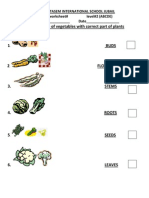 Match the picture vegetables with correct part of plants.docx