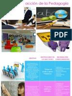 campo de accin de la pedagoga