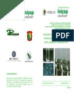 Guia Para La Micropropagacion y Produccion in Vitro de Plantas de Sotol