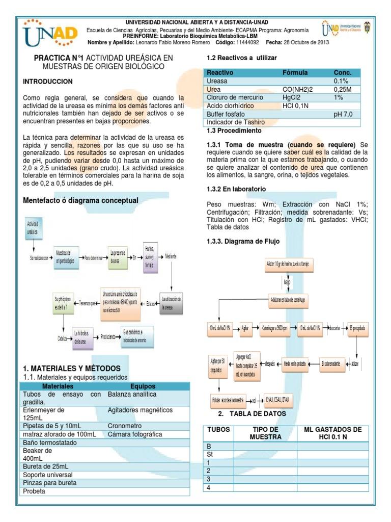 jugos para regular el acido urico recetas para acido urico que hacer para eliminar acido urico