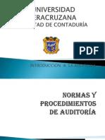 2-normasyprocedimientosdeauditora-111214144623-phpapp02 (1)