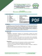 SILABOS-2013-2-IA3023