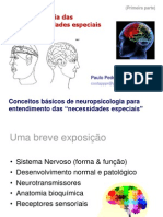 1 Neuropsi Deficiencias C Basicos