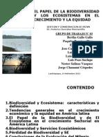 Papel Biodiversidad y Los Ecosistemas
