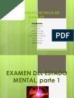 Examen Del Estado Mental Completo.