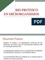 Recambio Proteico en Microrganismos