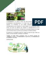 ECOSISTEMA        ambiental