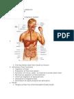 PAthos exam 3 disorders of the abd.