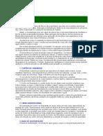 Biomecanica Global