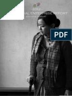 China Social Enterprise Report (2012) - Executive Summary.pdf