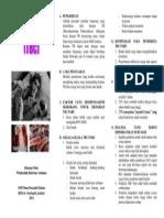 Leaflet TBC PARU.docx