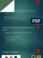 Presentation -1 fyp.pptx