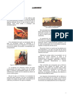 laboreo.pdf