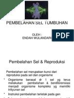 3. pembelahan sel.ppt