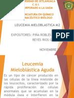 Leucemia Mieloblastica M2