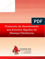 protocolo df CHEMOB.pdf