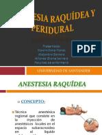 anestesiaraqudeayperidural-120912031206-phpapp01