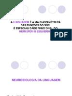 Neurobiologia Da Linguagem 2