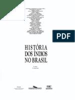 Tylor Anne Chritine _historia Pos Colombiana Da Alta Amazonia_Historia Dos Indios No Brasil_pp_213-238_p
