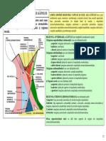 SECTIUNEA 9 REG TOPOGRAFICE GAT MM PLATYSMA SCM.pdf