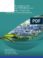 Livro Impactos Tecnologicos Das Parcerias Da PETROBRAS...