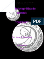Guía Fotográfica de plantas_CHECHO_ 2013_26D7E96B