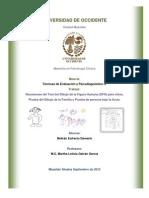 Resumen Test Persona Bajo La Lluvia, Dfh, Familia, Maestria