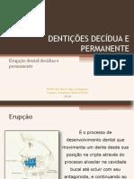 Apresentacao Denticoes Decidua e Permanente