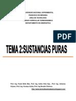 GUIA2SUSTANCIASPURAS
