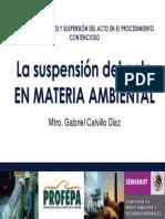 La Justicia Suspensional en Materia Ambiental03
