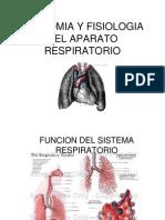 Anatoma y Fisiologia Respiratoria 1221858416155050 8