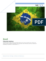 BRAZIL Portfolio.pdf
