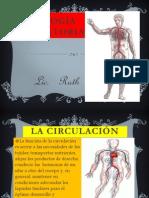 Exp Fisiocirculat