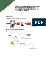 Actividad Del Agua Electrolizada Neutra Como Agente Inhibidor Del Crecimiento de Rhizopus Stolonifer Causante de La Pudricion Blanca en Cultivos de Fresa