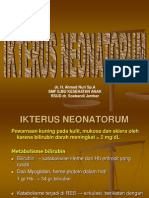 IKTERUS NEONATORUM.ppt