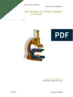 Observação Microscópica de Células Vegetais e Animais (Relatório)