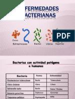 Enfermedades_Bacterianas