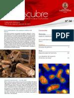 Redescubre14.pdf