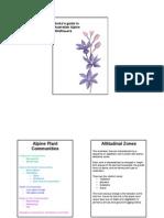 burkes guide to alpine wildflowers-website