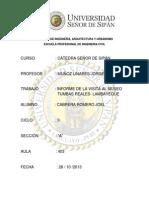 Informe Museo Tumbas Reales