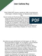 Teoria de Enfermagem Roy 2008.2