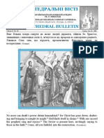 Weekly Bulletin 072609