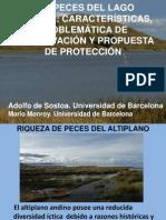Presentación Titicaca_2011_PUNO---UB- MNCNM-Informe-final