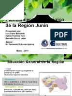 Planeamiento_Estrategico_Región_Junin