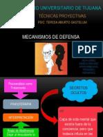 Mecanismos de Defensa Expo