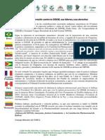 PronunciamientoCOICA_CIDOB250713
