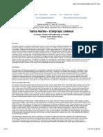 Yartsa Gunbu - Cordyceps sinensis.pdf