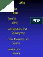 Fertilization .pdf