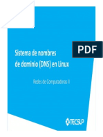 07 DNS en Linux